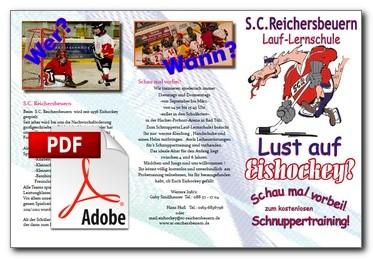 lauflernschule-flyer